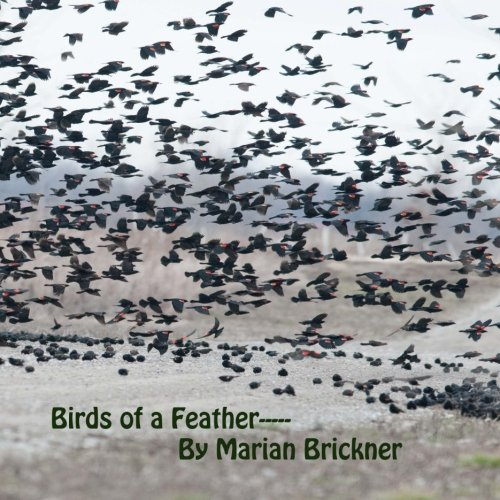 Birds of A Feather--- pdf