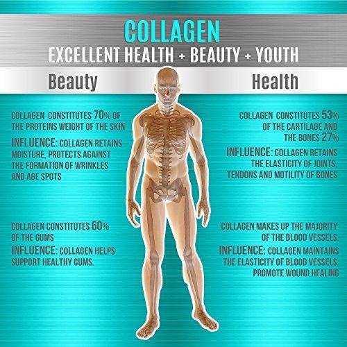 Collagen Powder Peptides 16oz Unflavored Hydrolyzed Collagen Grass Fed Non GMO Kosher Easy Mix Drink Pure Beef Protein Hidrolysate Supplement 1 Pound (Collagen)