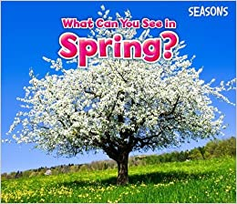 What Can You See In Spring? (Seasons): Amazon.co.uk: Sian Smith: Books
