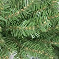 Northlight Unlit Northern Pine Full Artificial Christmas Tree, 14'