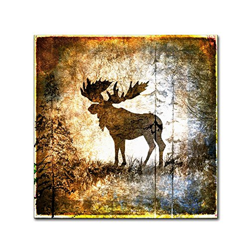 High Country Moose by LightBoxJournal, 24x24-Inch Canvas Wall (Country Moose)