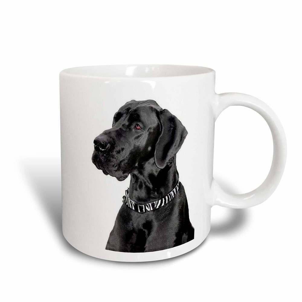 Black//White 3dRose mug/_1054/_3 Black Great Dane Magic Transforming Mug 11 oz