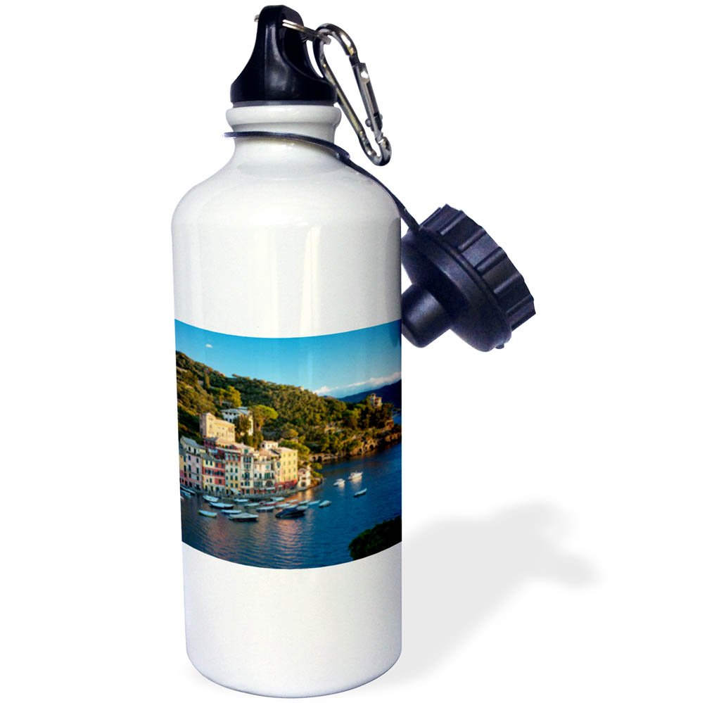 3dRose Danita Delimont - Italy - Early morning view over harbor town of Portofino, Liguria, Italy - 21 oz Sports Water Bottle (wb_277563_1)