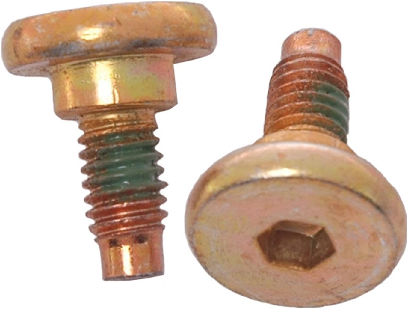 Pack of 2 ACDelco 18K17024 Professional Front Disc Brake Caliper Anchor Plate Bolts