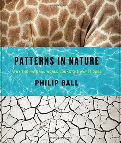 Patterns In Nature Why The Natural World Looks The Way It Does Enchanting Nature Patterns