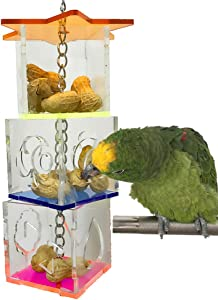 Bird Foraging Box Food Holder Toy for Parrot Parakeet Cockatiel Conure African Grey Cockatoo Macaw Amazon Budgie Lovebird Finch Canary Small and Medium Bird Cage Feeder