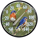 AcuRite 01598A1 12.5-Inch Wall Thermometer, Bluebirds