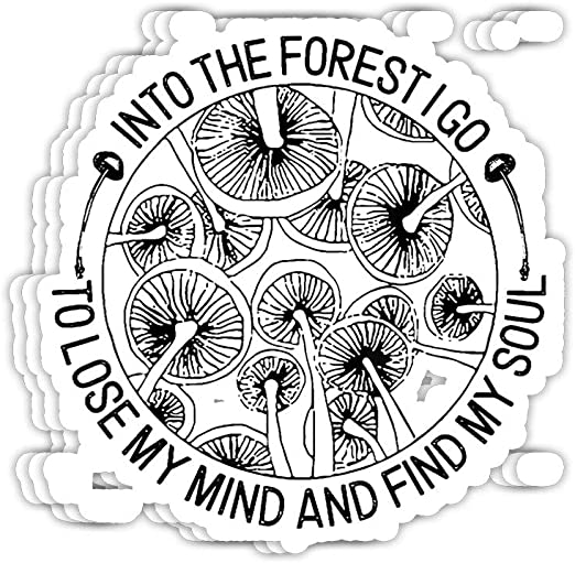 And Into The Forest I Go To Lose My Mind And Find My Soul Sticker Vinyl Decal Wall Laptop Window Car Bumper Sticker 5