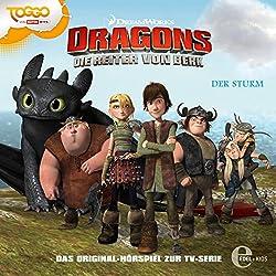 Der Sturm (Dragons - Die Reiter von Berk 2)