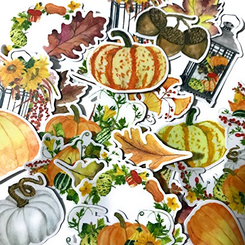 Navy Peony Watercolor Pumpkin and Halloween Stickers and
