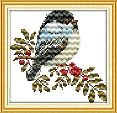 Full Range of Embroidery Starter Kits Stamped Cross Stitch Kits Beginners for DIY Embroidery with 40 Pattern Designs Flower Mouse