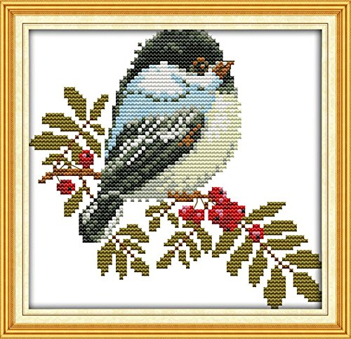 (Full Range of Embroidery Starter Kits Stamped Cross Stitch Kits Beginners for DIY Embroidery with 40 Pattern Designs - Little Bird )