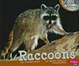 Raccoons, J. Angelique Johnson, 1429661941