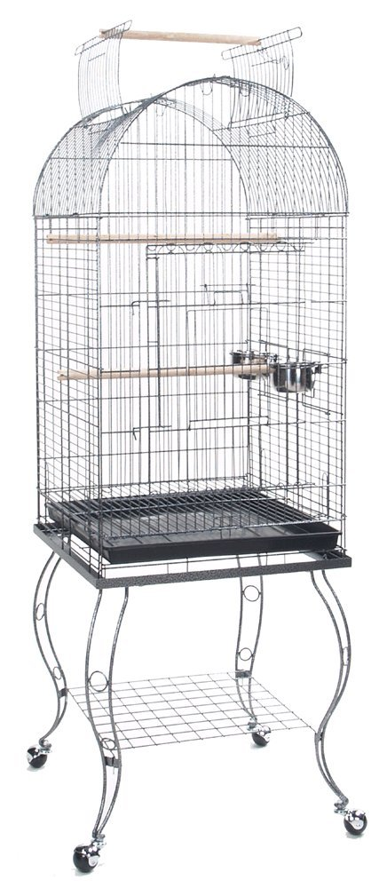 Bird Parrot Cage Cockatiel Amazon African Grey Caique Conure, 20 X 20 X 65''h by PetcageMart