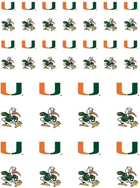 NCAA University of Miami Small//20 x 30 Mat Florida