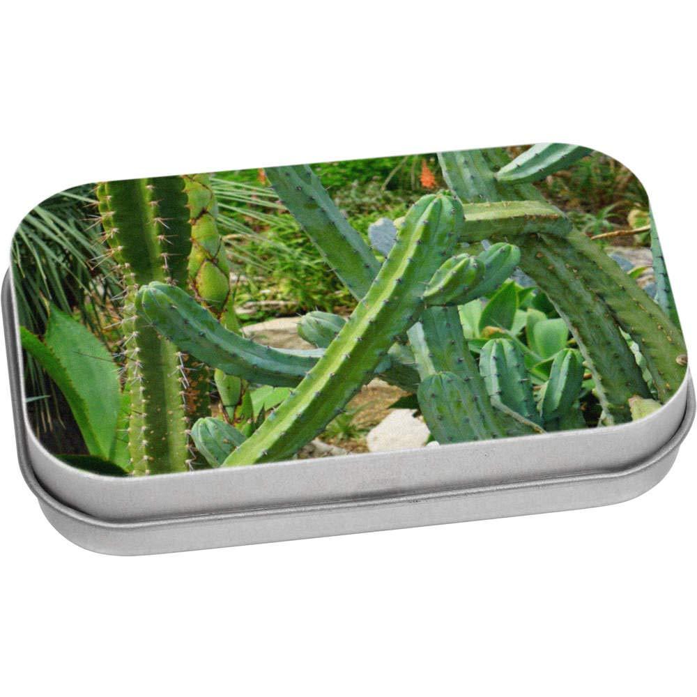 Azeeda 80mm Cactus Contenitore Tin Scatola di Latta TT00016078