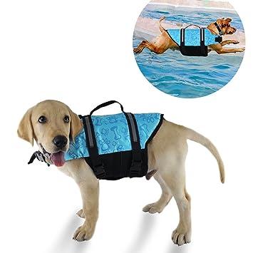 YMTECH Chaleco salvavidas para perro, chaleco para natación para perros, salvavidas para perros: Amazon.es: Productos para mascotas