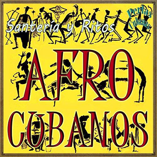 Congas Vintage Latin - Conga (Afro Cuban)