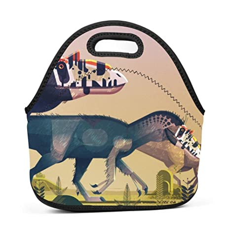 14d560c60566 Amazon.com - The Dinosaur Lunch Bag Box Tote Insulated Waterproof ...
