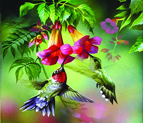 SunsOut Hummingbirds 25 Large Piece Jigsaw Puzzle