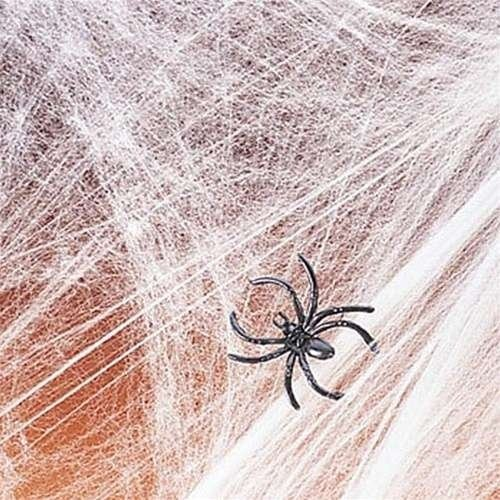 Spider Web Streachable white with (2) Spiders Pkg/1 (Halloween Decorations Spider Web)