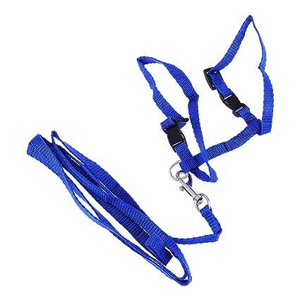 Hemobllo 1PC Arnés Práctico Collar de cuerda de tracción de correa ...