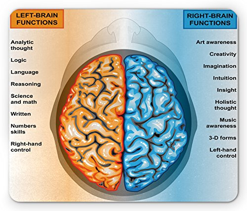 l Mouse Pad, Human Brain Left and Right Functions List Mentality Intellect Neurology, Standard Size Rectangle Non-Slip Rubber Mousepad, Pale Blue Orange ()