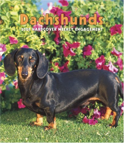 Dachshunds 2008 Hardcover Weekly Engagement Calendar (Multilingual Edition)
