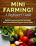 img - for Mini Farming! A Beginner s Guide: Build a Practical and Self-Sufficient Mini Farm and Grow Organic Food at Home (backyard homestead, backyard chickens Book 1) book / textbook / text book