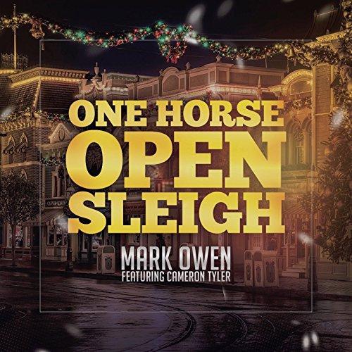 One Horse Sleigh - 3