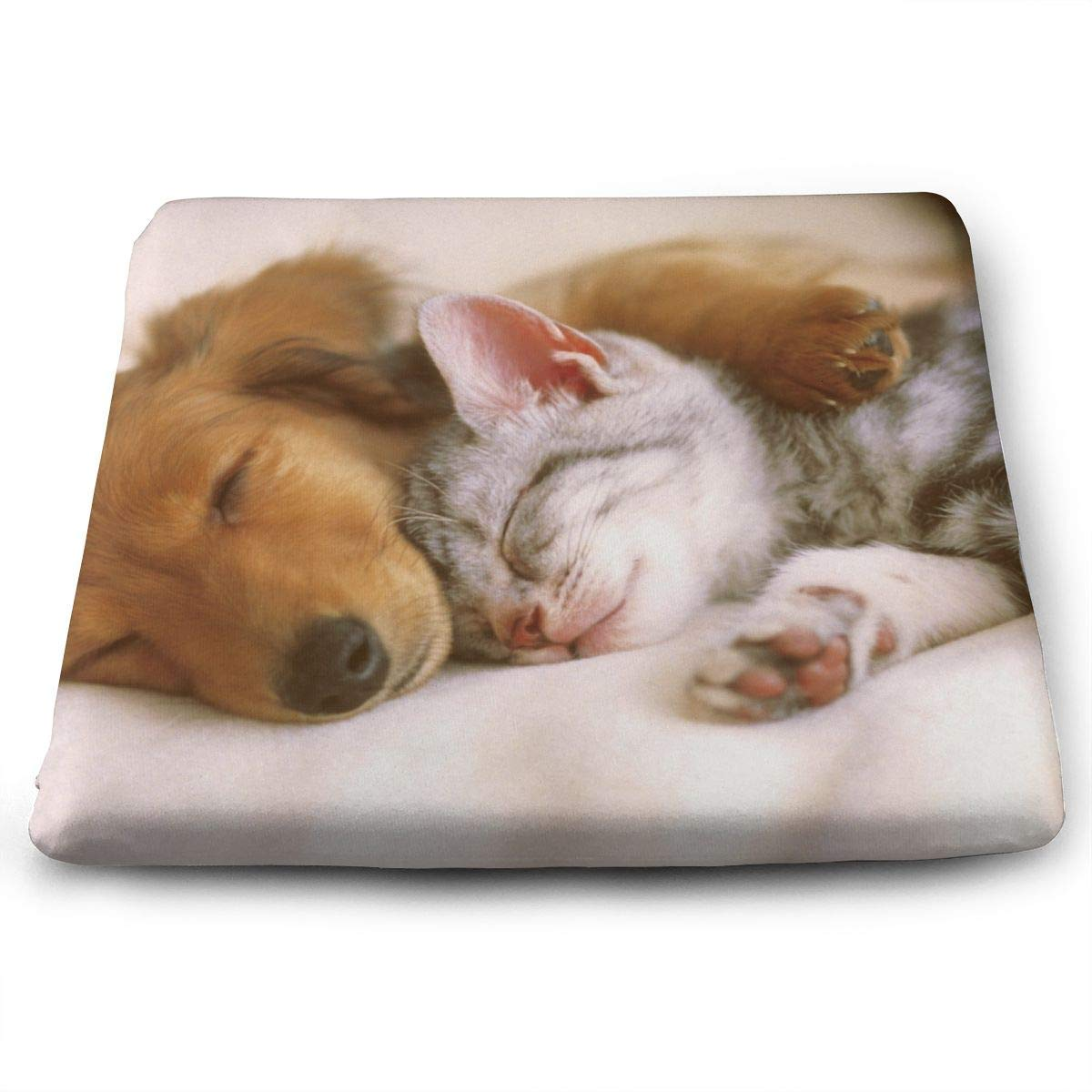 Fantastic Amazon Com Seat Cushion For Office Chair Wrinkle Cute Cats Beutiful Home Inspiration Truamahrainfo