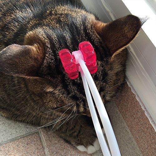 Cat Face Roller Amazon