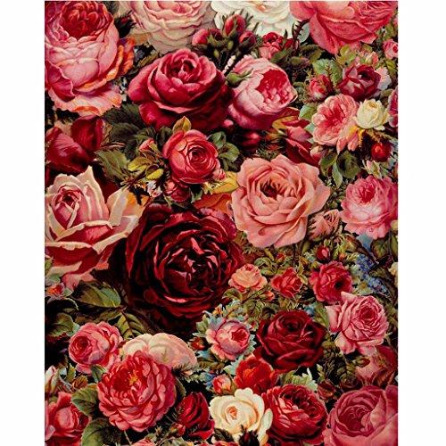 油絵 数字キット 手塗り デジタル油絵 DIY絵 数字油絵 数字キットによる 子供の塗り絵 家の装飾のギフト Lush Red Rose 40*50CMの商品画像