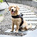 Lightjust Service Dog Vest Harness with Service Dog Patches+ Heavy Duty Dog Leash +IN TRAINING Patches,No Pull Dog Harness,3M Reflective,Comfort X Dog Harness, for Large Medium Small Dogs,Black