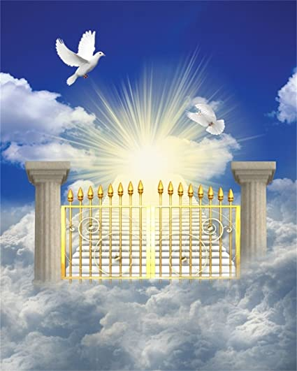 c1a3d3ad089d AOFOTO 10x12ft Heaven Gate Background Gates of Paradise In Clouds  Photography Backdrop Peaceful Sky Dove Shiny