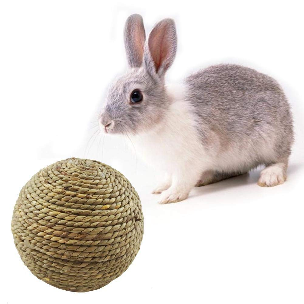 BRAVOSOLEIL Dientes peque/ña Mascota La masticaci/ón de Juguetes Bola de Pulido de c/ésped Natural Juguetes para Gatos peque/ños roedores Conejos