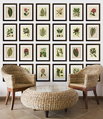 Timeless Frames 11x14 Inch Fits 8x10 Inch Photo Supreme