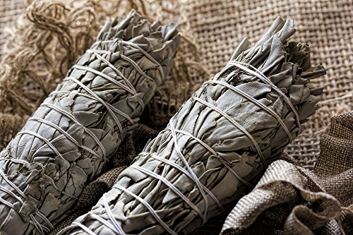 3 Pack Extra Large California White Sage, Each Stick Approximately 8.5 Inches Long and 2 Inches Wide for Smudging Rituals, Energy Clearing, Protection, Incense, Meditation, Made in USA