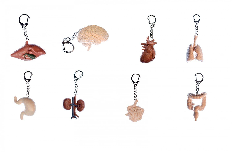 Miniblings 8X Organe Set Schlüsselanhänger Schlüsselring Organ ...