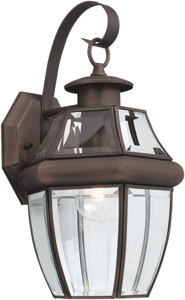 B00084K98G Sea Gull Lighting 8067-71 Single-Light Outdoor Lancaster Wall Lantern, Clear Beveled Glass and Antique Bronze 61xfipZtjNL.SL1000_