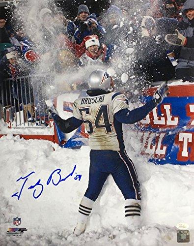 - Tedy Bruschi Signed 16x20 New England Patriots Snow Photo JSA ITP