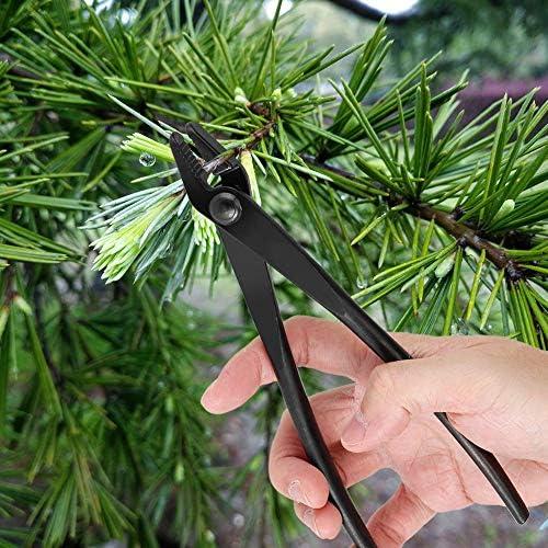 DEWIN Pince Bonsai - Bairyu - Pince a Jin Pince à Fil de bonsaï en Alliage d'acier au manganèse avec extrémité Ronde pour Un Outil de Jardinage en Toute sécurité