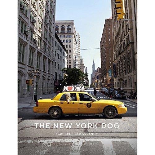 new york dogs - 1