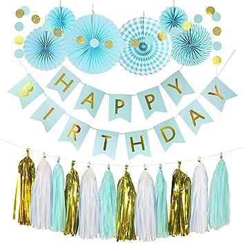 Hivexagon Set de 20 Piezas Kit de Fiesta: Pancarta de Feliz Cumpleaños, Borlas de Papel, Abanicos de Papel, Decoraciones de Fiesta,Fiestas Temáticas ...