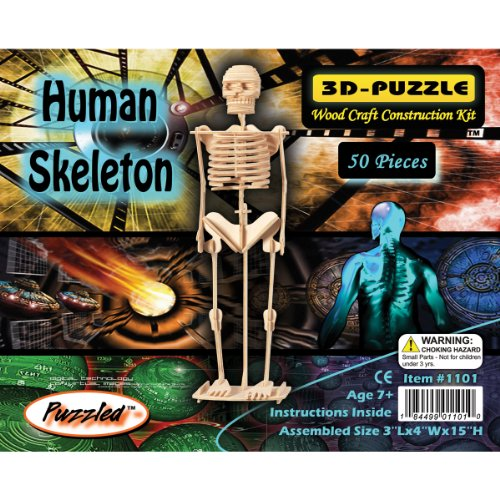 Puzzled Human Skeleton 3D Jigsaw Puzzle (50-Piece), 3