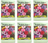 Valley Greene (6 Pack) Heirloom Variety Double Mixed Colors Bachelor Buttons 450 mg/package Non GE Seeds