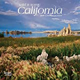 California, Wild & Scenic 2019 7 x 7 Inch Monthly Mini Wall Calendar, USA United States of America Pacific West State Nature (Multilingual Edition)