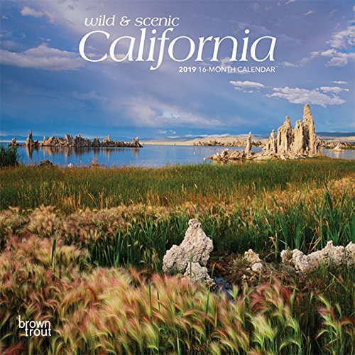 California, Wild & Scenic 2019 7 x 7 Inch Monthly Mini Wall Calendar, USA United States of America Pacific West State Nature (Multilingual ()