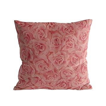 Amazon.com: Caffling - Fundas de almohada de terciopelo ...