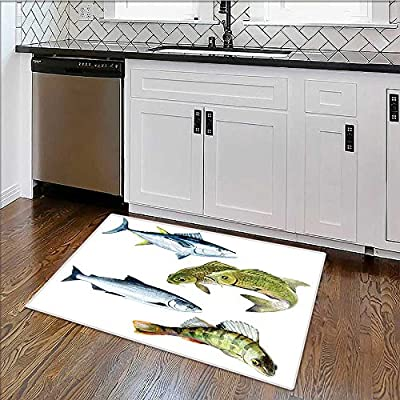 """Easy To Store Rug carp salmon perch tuna fish isolated on a white background Soft, Non-slip W17"""" x H14"""""""